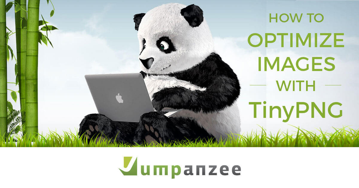 How to Optimize Images with TinyPNG
